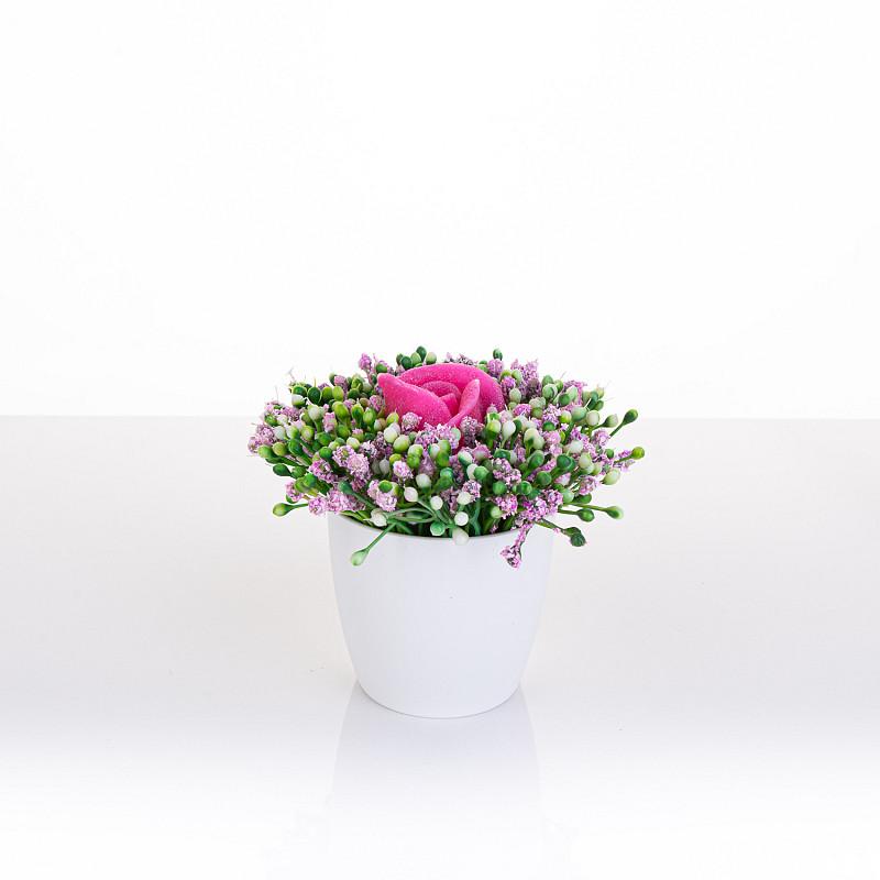 Zapeljivi cvetlični gozdiček, mini